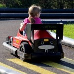 Best Electric Go Kart Reviews & Guide 2017